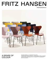 Professionals Brochure - A Sense of Colour - English